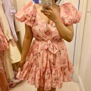 Love Shack Fancy Dress Pink Floral Plus Size 14